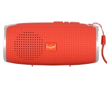 Terabyte Wireless Portable Bluetooth Speaker (Multicolor)
